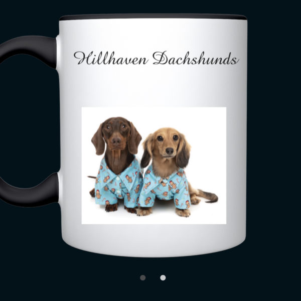 Dachshund In Blue Pyjamas